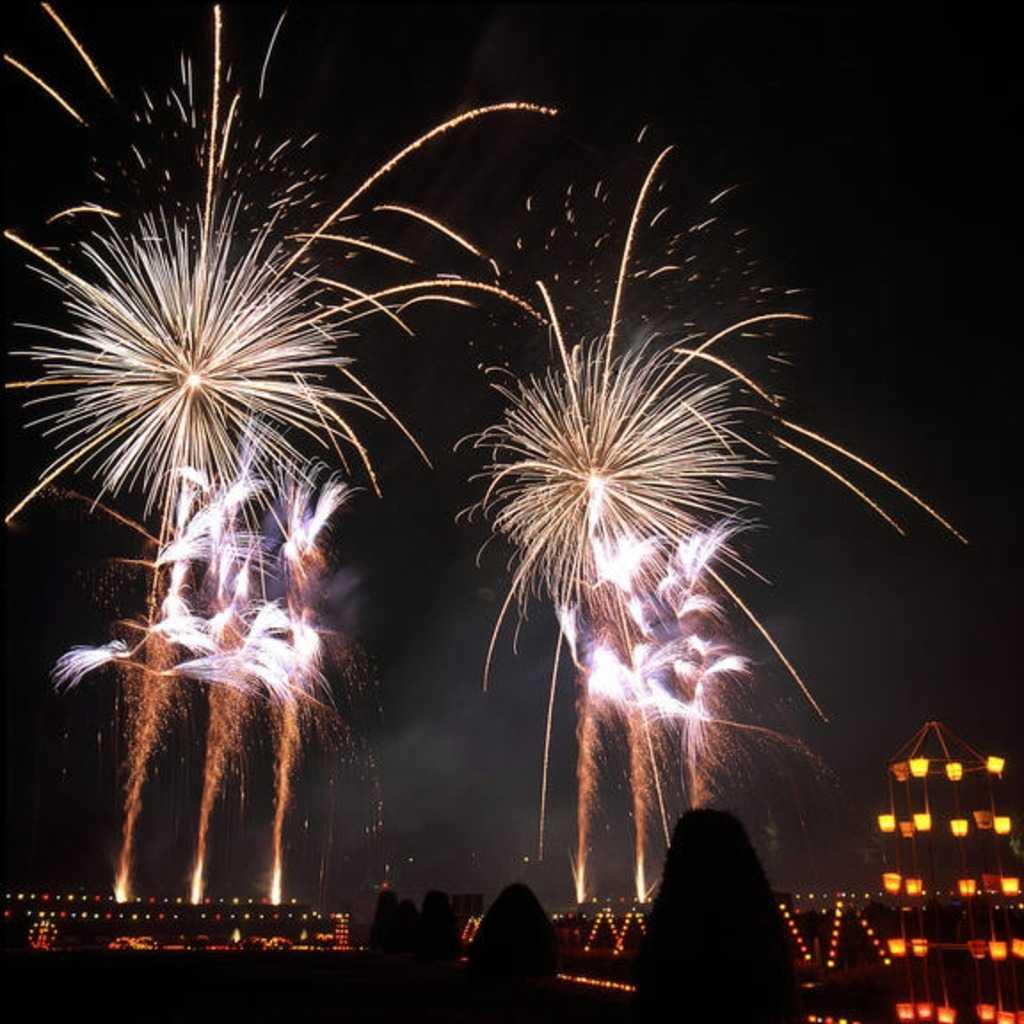 Feuerwerk im Blühenden Barock, Residenzschloss Ludwigsburg; Foto: Landesmedienzentrum Baden-Württemberg, Dieter Jäger